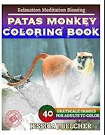 Patas Monkey Coloring Book for Adults Relaxation Meditation Blessing