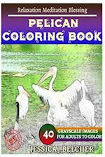 Pelican Coloring Book for Adults Relaxation Meditation Blessing