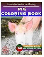 Pig Coloring Book for Adults Relaxation Meditation Blessing