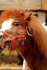 Playful Ponies Notebook