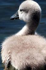 Cygnet Notebook