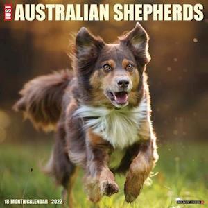 Just Australian Shepherds 2022 Wall Calendar (Dog Breed)