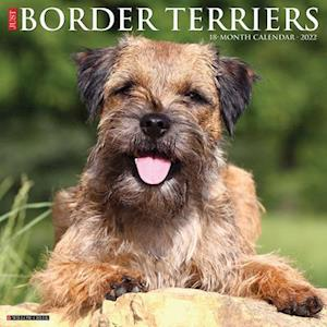 Just Border Terriers 2022 Wall Calendar (Dog Breed)