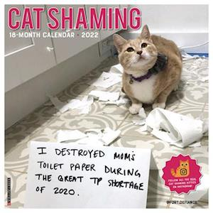 Cat Shaming 2022 Wall Calendar