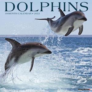 Dolphins 2022 Wall Calendar