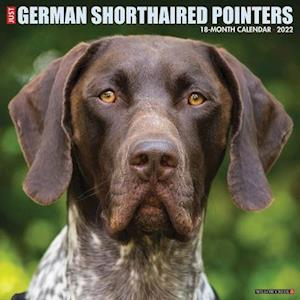 Just German Shorthaired Pointers 2022 Wall Calendar (Dog Breed)