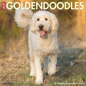 Just Goldendoodles 2022 Wall Calendar (Dog Breed)