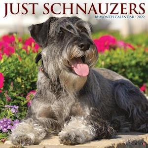 Just Schnauzers 2022 Wall Calendar (Dog Breed)