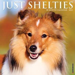 Just Shelties 2022 Wall Calendar (Dog Breed)