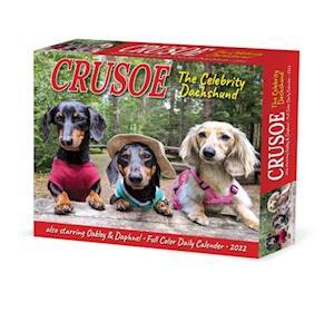Crusoe the Celebrity Dachshund 2022 Box Calendar, Daily Desktop