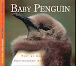 Baby Penguin (Nature Babies)