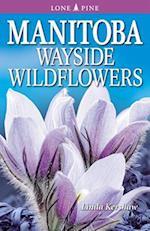 Manitoba Wayside Wildflowers af Linda Kershaw