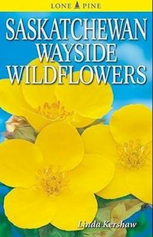 Bog, paperback Saskatchewan Wayside Wildflowers af Linda Kershaw