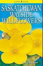 Saskatchewan Wayside Wildflowers af Linda Kershaw