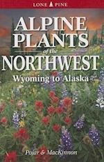 Alpine Plants of the Northwest af Jim Pojar, Andy MacKinnon