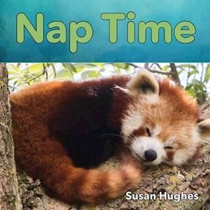 Bog, hardback Nap Time af Susan Hughes