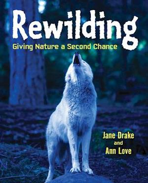 Bog, hardback Rewilding af Ann Love