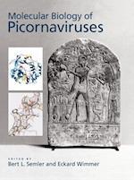 The Molecular Biology of Picornavirus