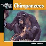 Chimpanzees (Our Wild World)
