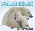 Polar Bears (Wild Ones)