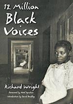 12 Million Black Voices af Edwin Rosskam, Richard Wright