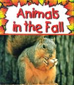 Animals in the Fall af Gail Saunders-Smith, Phd Gail Saunders-Smith