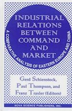 Industrial Relations Between Command and Market af Paul Thompson, Gerd Schienstock, Franz Traxler