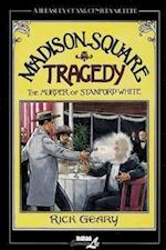 Madison Square Tragedy (Treasury of Victorian Murder (Graphic Novels))
