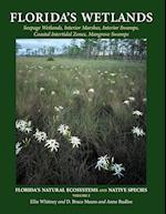 Florida's Wetlands (Floridas Natural Ecosystems and Native Species)