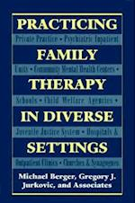 Practicing Family Therapy in Diverse Settings (Master Work) (The Master Work)