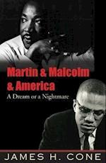 Martin and Malcolm and America