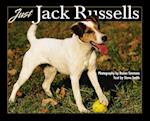 Just Jack Russells (Just Pets)