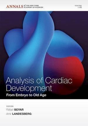 Analysis of Cardiac Development