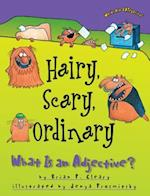 Hairy, Scary, Ordinary (Words are Categorical)
