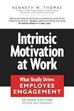 Intrinsic Motivation at Work (AgencyDistributed)