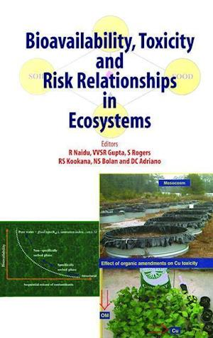 Bioavailability, Toxicity, and Risk Relationship in Ecosystems