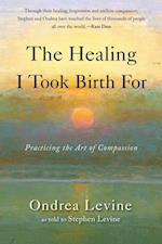 Healing I Took Birth for