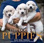 Dogist Puppies, The