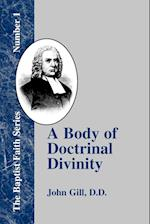 A Body of Doctrinal Divinity: