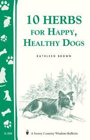 10 Herbs for Happy, Healthy Dogs