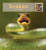 Snakes (My First Look At Pets Hardcover)