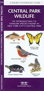 Yellowstone Wildlife (Pocket Naturalist guide)