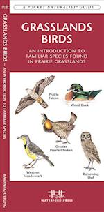 Grasslands Birds (Pocket Naturalist Guides)