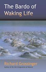 Bardo of Waking Life