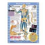 Blueprint for Health Your Skeleton Chart (Blueprint for Health)