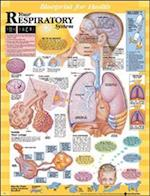Blueprint for Health Your Respiratory System Chart (Blueprint for Health)