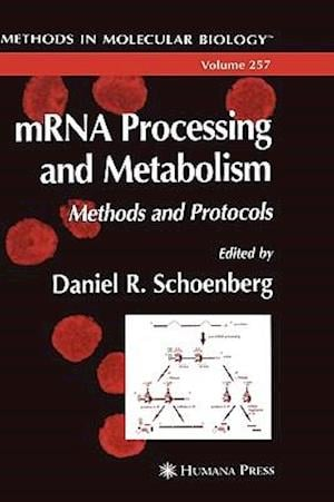 mRNA Processing and Metabolism : Methods and Protocols