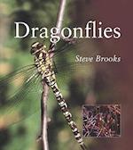 Dragonflies (Natural World Series)