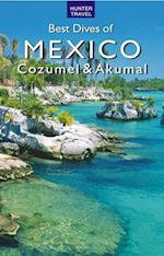 Best Dives of Mexico: Cozumel & Akumal