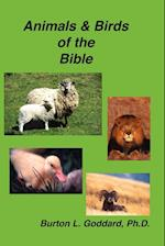 Animals and Birds of the Bible